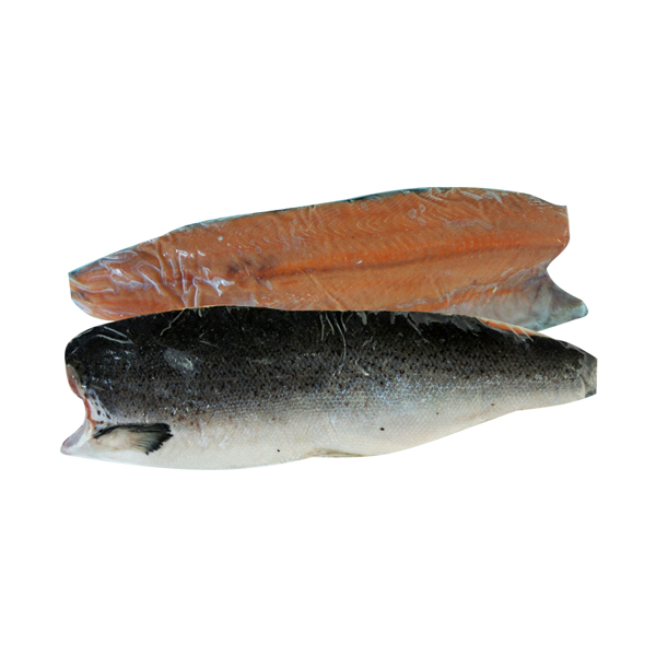 Salmon Fillet Frozen ( Trim A )